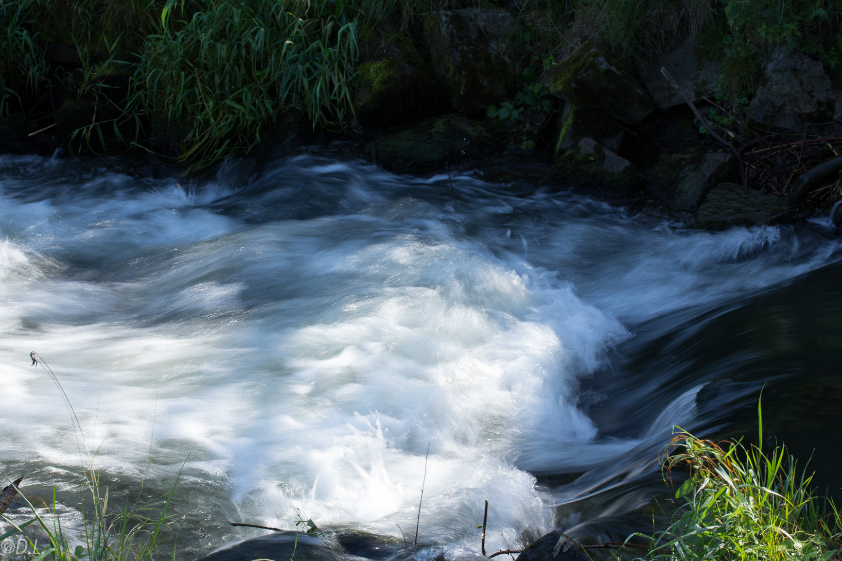 Wasser im Bach