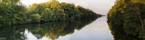 Donau als Panorama