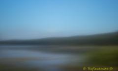 vernebelte Donau